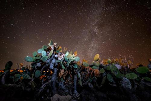 Alessio Puglisi Photography / Fotografo Sardegna